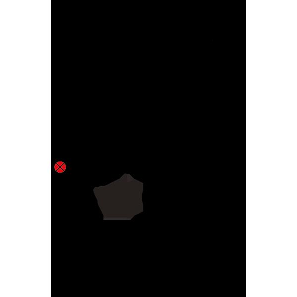 Схема подключения DS98L-120